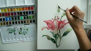 pink lilies watercolor painting challenge