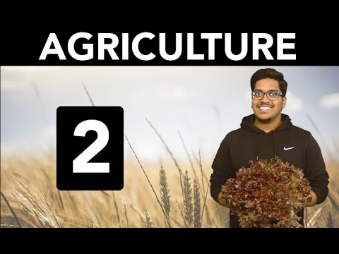 Geography: Agriculture (Part 2)