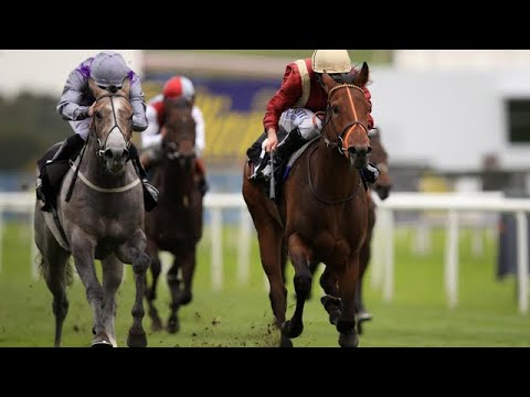 Horse racing tips: Salisbury and Doncaster – Templegate's betting preview  for Sunday, June 17