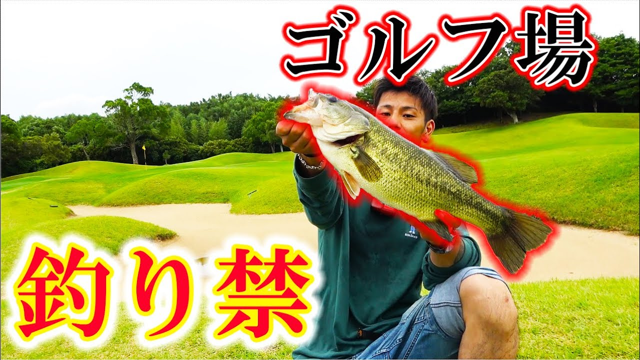 ゴルフ場の中の釣り禁池で釣り三昧!カートで釣り場回ります!