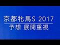 【競馬予想】 京都牝馬S 2017 予想