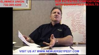 Bed Bug Union NJ Freeze, Heat, Steam or Pesticides | 732-640-5488 Bed Bug New Jersey
