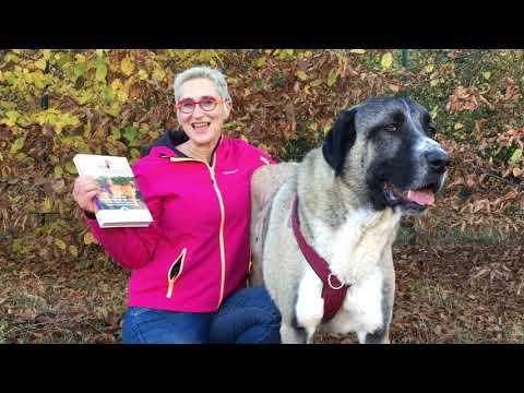 """""""Ich halte dich! - Hunde Ratgeber von Mirjam Cordt"""