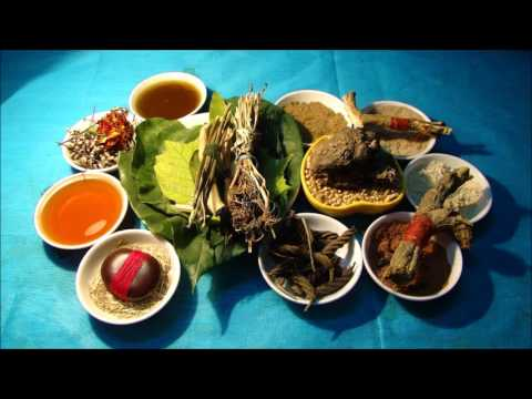 Tribal Herbal Medicines for Cancer Prevention and Cure by Pankaj Oudhia-1143