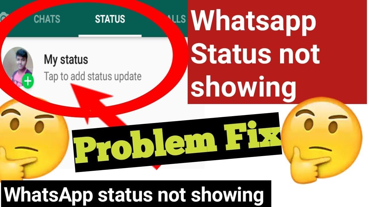 Whatsapp Status Not Showing Problem वहटसएपप