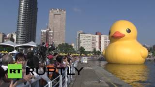 Taiwan: Giant rubber duck makes waves in Kaohsiung