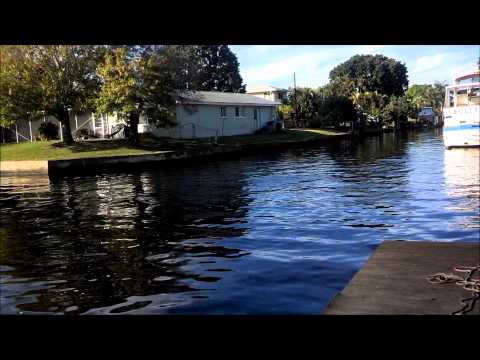 Dolphins in Cape Coral FL canal &  Paddle boarding with dolphins at Cape Coral