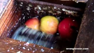 How To Press Apple Cider