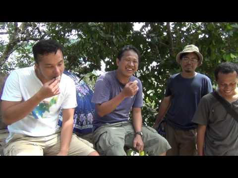 Makan Duren di Sawai