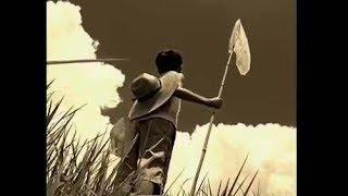 J.Eさんのすばらしい動画に2014年のライブを重ねました。
