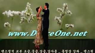 카바레 무도장 실전 사교댄스 댄스원 부르스동영상 B4 09 8
