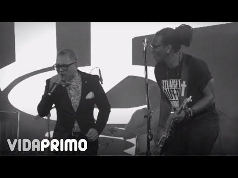 TOQUE PROFUNDO FEAT. RAFA ROSARIO-MI MORENA/RAMONA LIVE TQ28 ANIVERSARIO