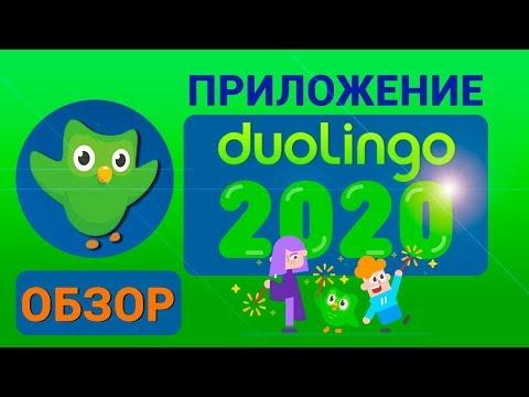 Duolingo. Обзор приложения