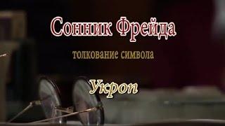 К чему снится Укроп сонник, толкование сна