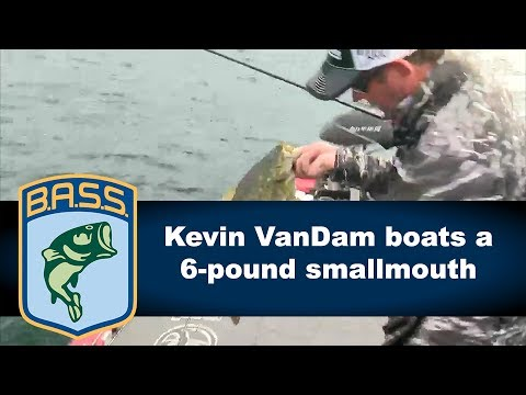 Kevin VanDam boats a giant smallmouth bass on St. Lawrence River