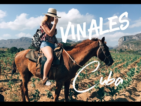Viñales, Cuba Adventure (Tobacco Fields & Horseback Riding)