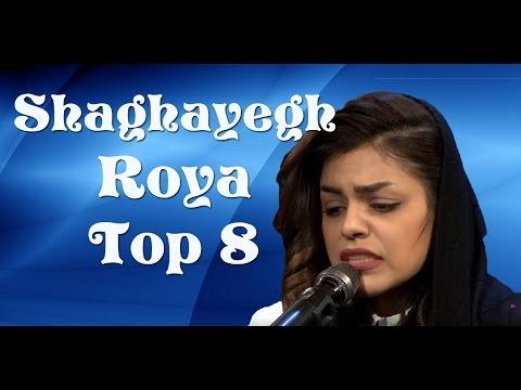 Afghan Star, Top 8, Shaghayegh Roya, ستارهٔ افغان ، ۸ بهترین، شقایق رویا