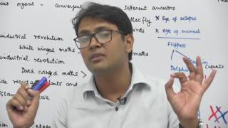 Evidences for Evolution - Evolution - Dr. Rajeev Ranjan - NEET & AIIMS Videos NEET AIIMS