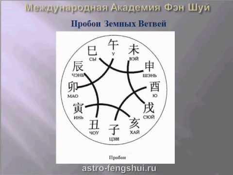 обучение китайская астрология ба цзы книги этом неисправности