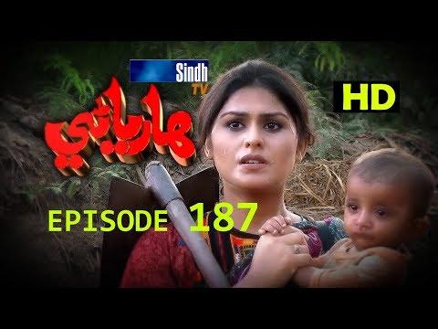 Hareyani Ep 187 -Sindh TV Soap Serial  - 16-2-2018 - HD1080p -SindhTVHD-Drama