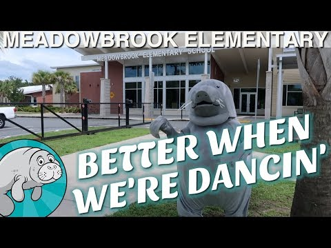 """Better When We're Dancin'"" - Meadowbrook Elementary Edition"