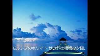 杉山清貴アローンアゲイのコピーです。