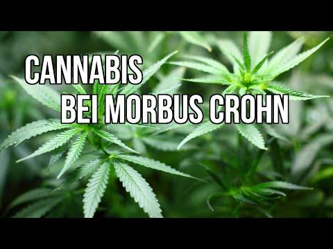Morbus Crohn: Cannabis kann Symptome lindern!