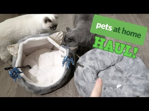 PETS AT HOME HAUL! | CHRIS & EVE