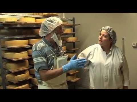 Channel Cheese - Visiting Marrook Farm, NSW Australia