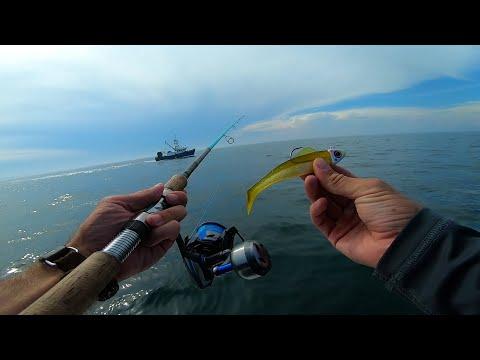 Inshore Multi Species Fishing The Montauk Rips