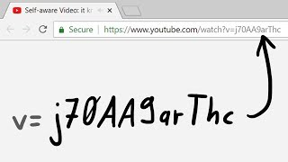 Self-aware Video: it knows its own YouTube Video ID?