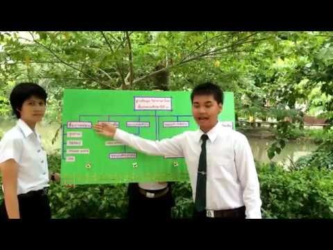 ฐานข้อมูล วิชาภาษาไทย ป. 3