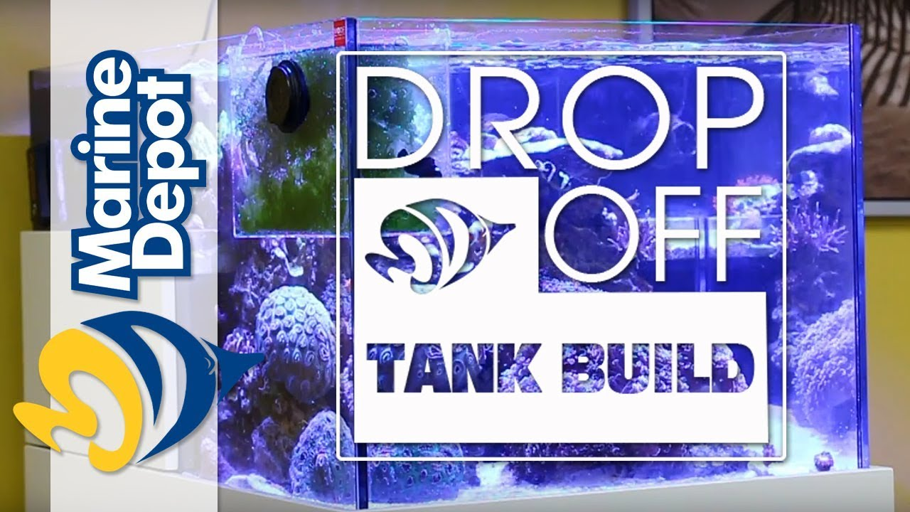 Drop-Off Tank Build #12: THE APEX EPISODE! We Set Up Our Controller, LDK, ATK, & FMK Thumbnail