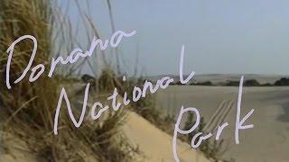 1分世界遺産 147 ドニャーナ国立公園 スペイン㉑