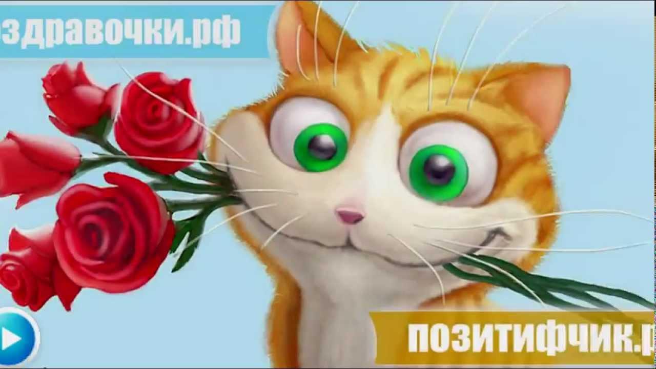 Картинки прикольного мультяшного кота