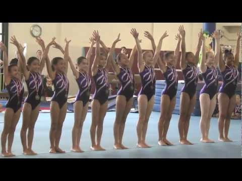 Emily's Team Gymnastics 2011 GymStars