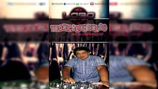 TROPICALES DEL 90 originales   Dj Lobo Potencia Remix