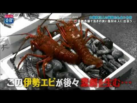 ヒロミ のりさん フミヤ キャンピンカー合宿 本編Part2