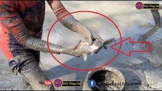 Live Net Fishing | fishing using the cast net by Removing Water from Pond