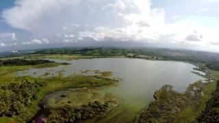 Laguna Tortuguero Manati y Vega Baja Puerto Rico