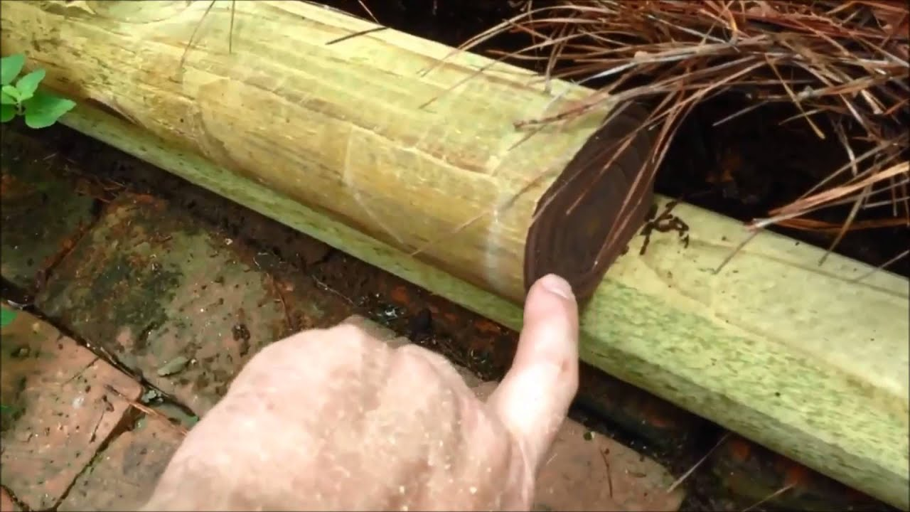 Landscape Timbers - YouTube