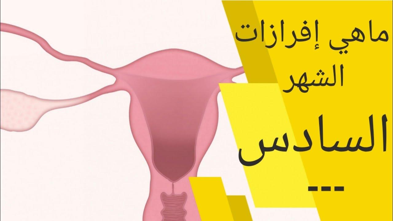 افرازات الحمل في الشهر السادس نزول إفرازات بيضاء او حمراء او بنيه او صفراء في الشهر السادس للحمل Youtube