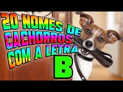 20 NOMES DE