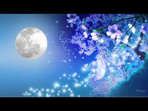Under The Starry Sky   Vocaloid : Megurine Luka