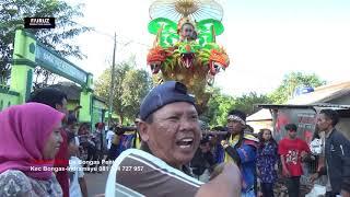 ANDI PUTRA 3 SING PENTING TARLING VOC  AAS  DS SUKAJATI BLOK KEBON BUAH