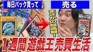 【検証】1週間毎日遊戯王カードを売って儲けた金額だけで生活できるのか?