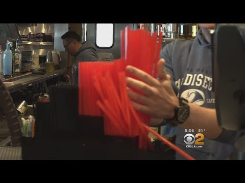 Malibu customers support ban on plastic disposables.