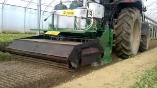 PTRL 1600 150 Disinfezione e preparazione del terreno