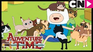 - Время приключений The Box Prince Cartoon Network