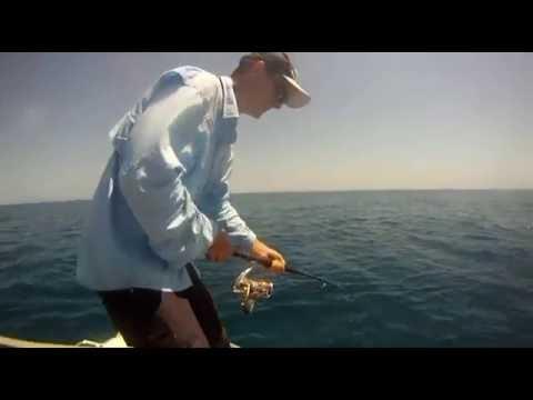 Keppel Island Magic Video